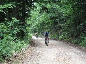 tmp_17926-biciklisti-41347589
