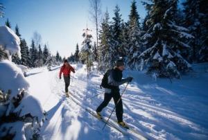 ski trcanje